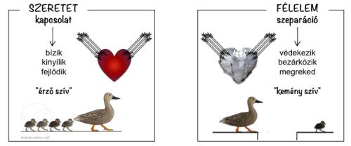 szeretet-felelem2-kek-neveles