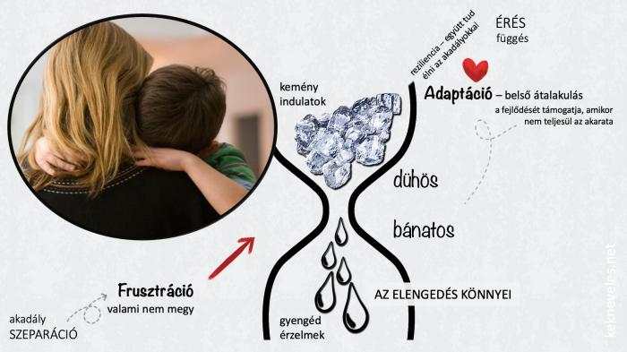 adaptacio-konnyes-fordulat2-kekneveles
