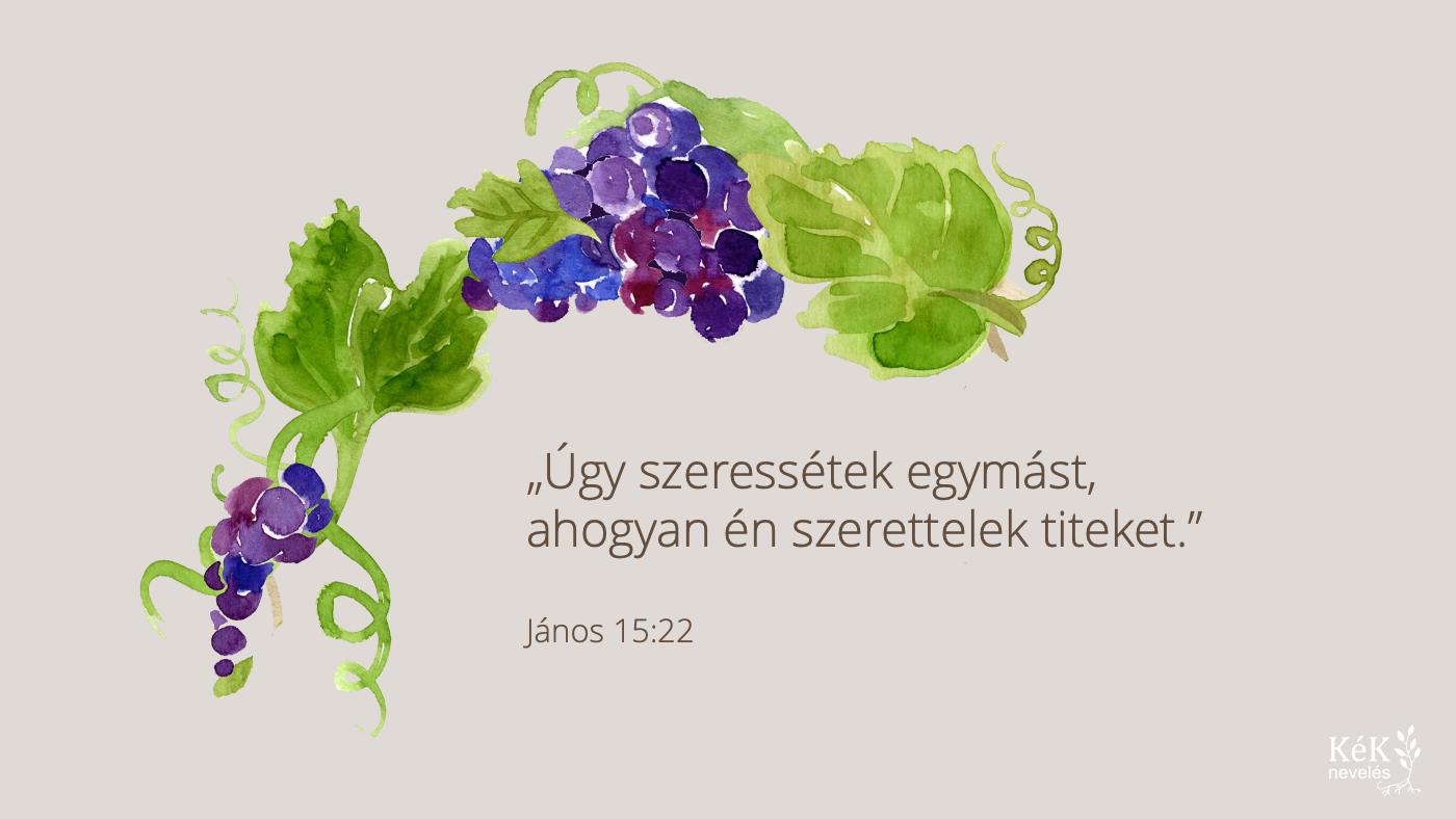 """""""Úgy szeressétek egymást, ahogyan én szerettelek titeket."""" János 15:22"""