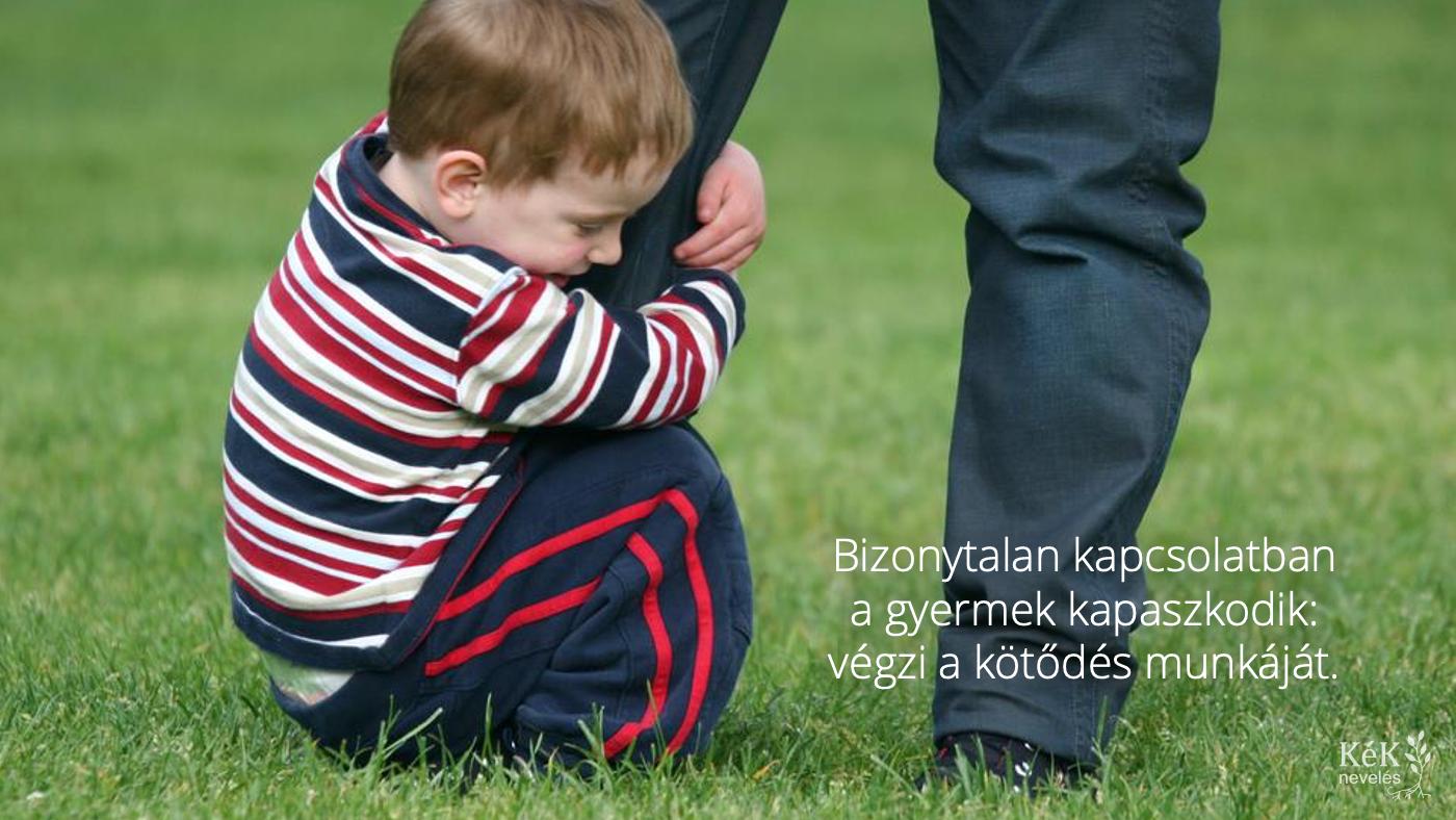 Bizonytalan kapcsolatban a gyermek kapaszkodik: végzi a kötődés munkáját.