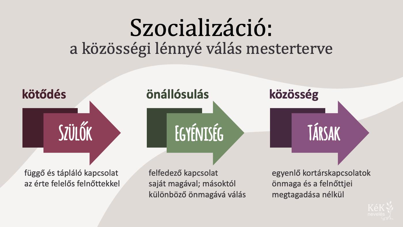 Szocializáció: a közösségi lénnyé válás mesterterve
